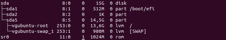 Check Existing Swap Partitions lsblk