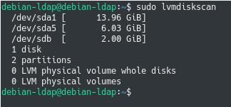 Display existing physical volumes lvmdiskscan