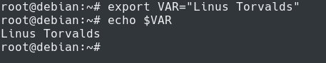 Set Environment Variables in Bash export