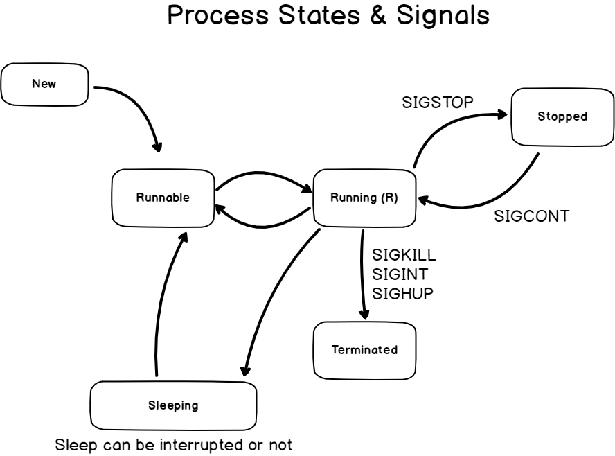 Signals and Processes States process-states
