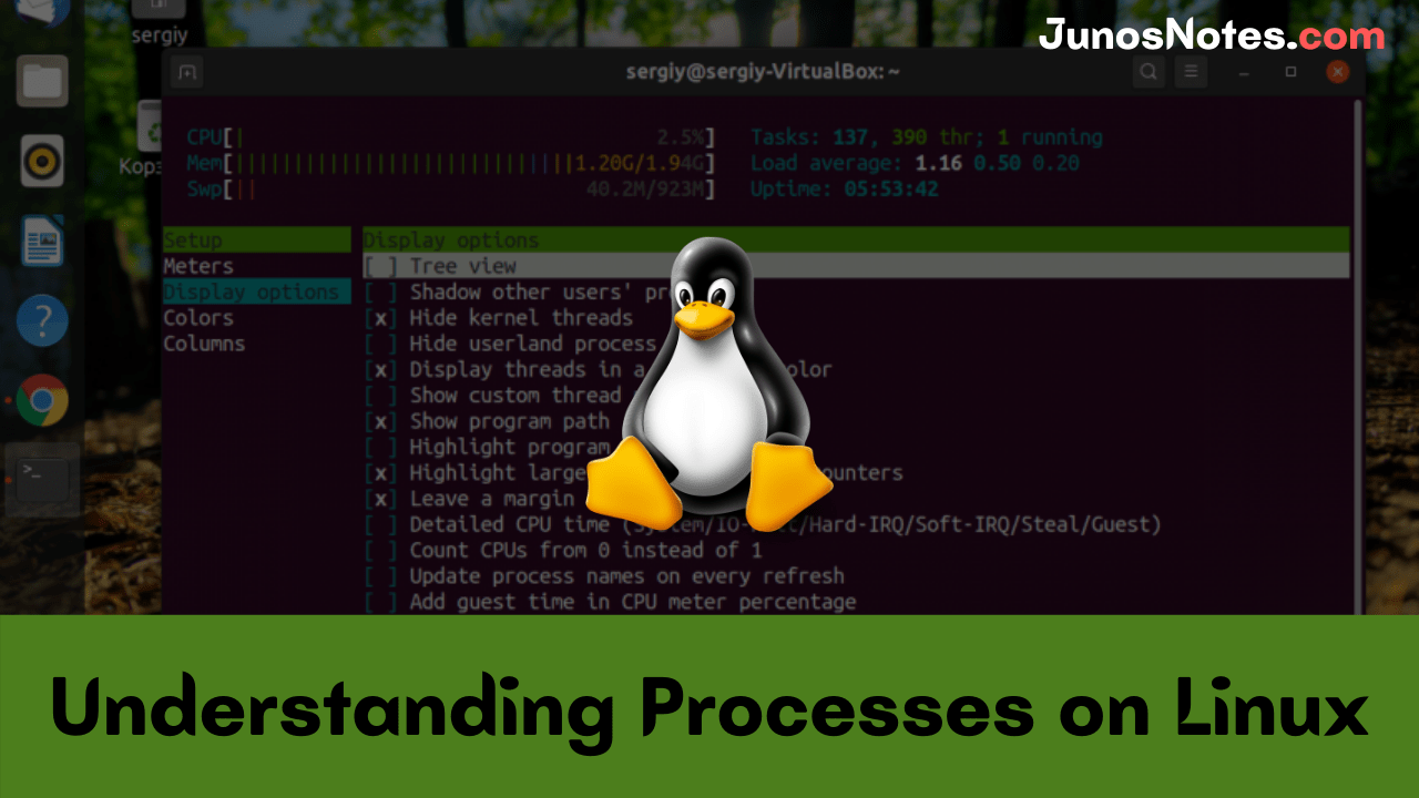 Understanding Processes on Linux