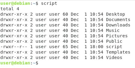 Using Bash Variables ls-l