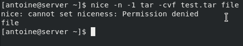 nice-permissions